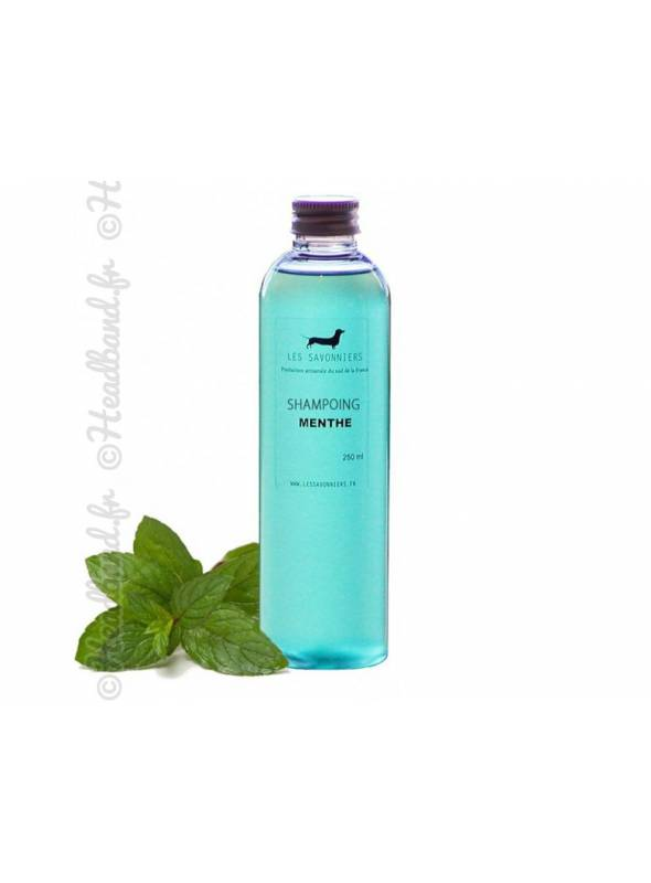 Shampoing doux menthe